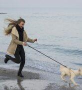 10 formas de hacer ejercicio con tu mascota